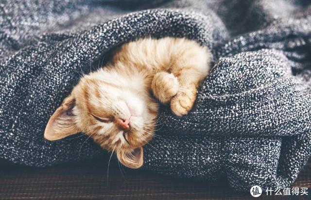 入睡难、睡眠浅,难以进入深睡?是时候改善你这糟糕的睡眠质量啦!