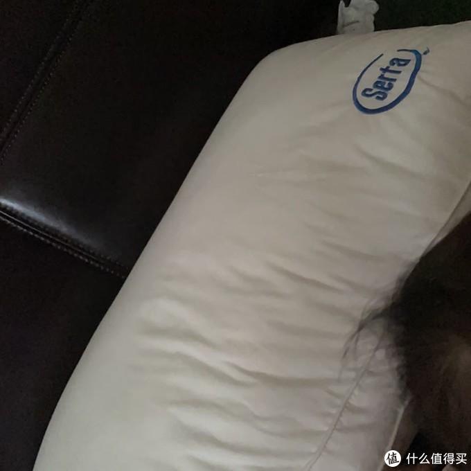 星夕 18cm弹簧枕头