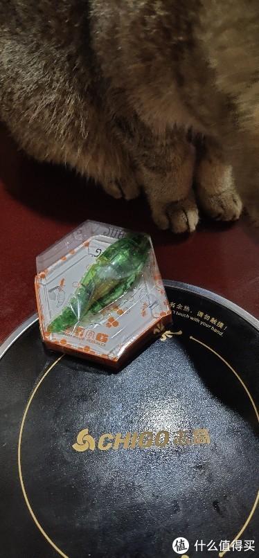 毛毛虫赫宝智能感应电动扭扭虫微型机器人儿童玩具爬行会躲避昆虫子宠物