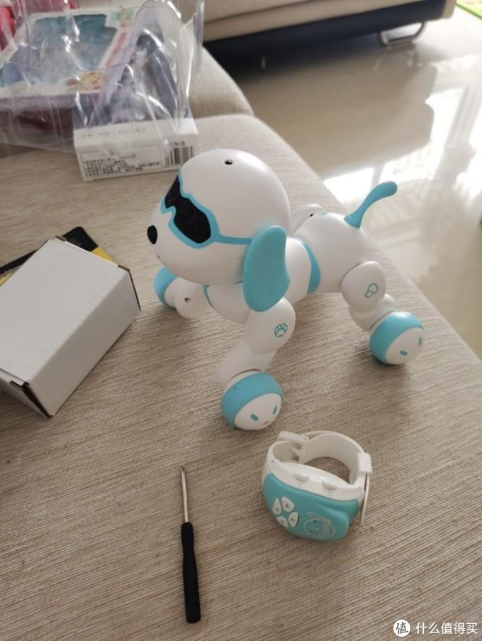 新入手的小六baby机器狗