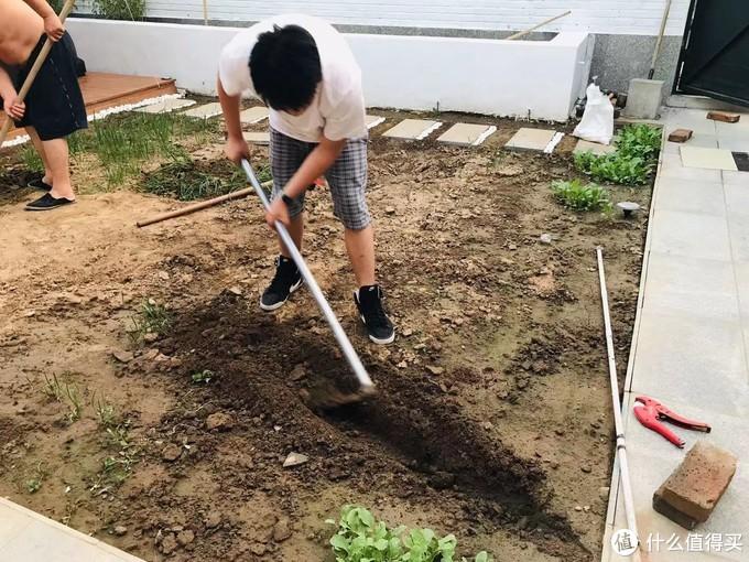 后面小路已经铺好挖一条沟埋水管做自动灌溉系统