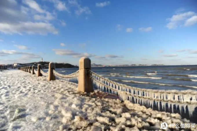 冬天去北方看海,不是疯了,是真会玩!