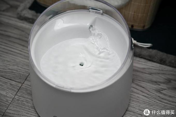 上班太忙没时间照顾猫主子,喝水不能少,给主子添置一台自动饮水机