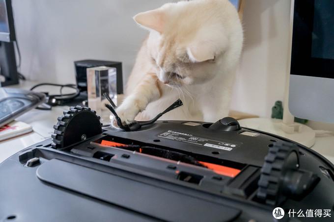 实现养猫家庭的光脚自由 — 米家扫拖机器人1T使用体验