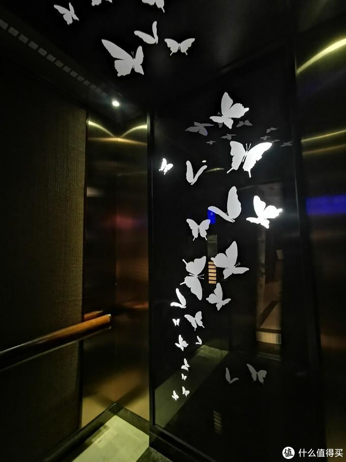 电梯里面的装饰画也是对应彩蝶纷飞的主题