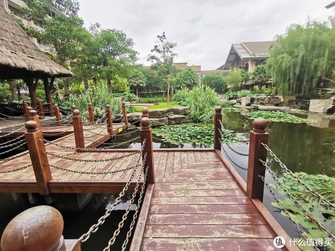 酒店庭院里的湖
