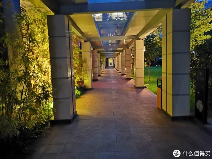 晚上在酒店走动时拍的照片