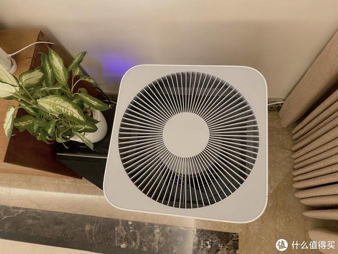 我为什么一定要买空气净化器?还不止一个?
