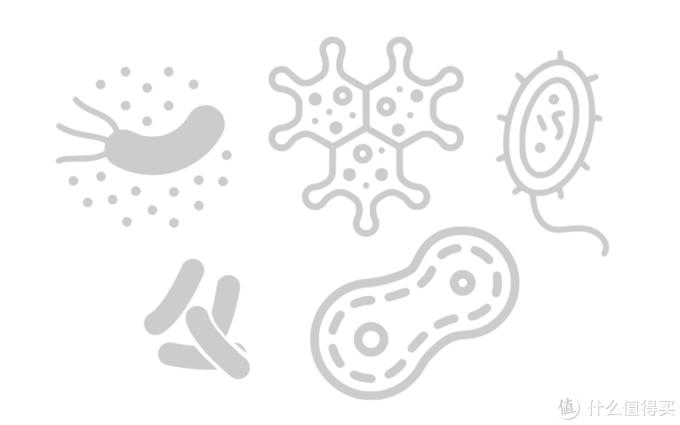 水中常见大肠埃希氏菌、枯草芽孢杆菌、绿脓杆菌、金黄色葡萄球菌等多种细菌
