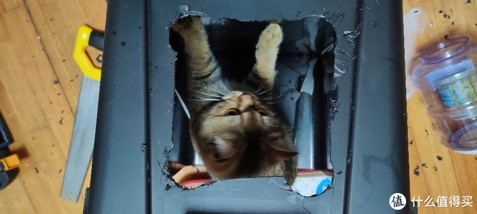冬天来了,自己动手做个猫温室/宠物猫窝智能恒温加热猫锅狗窝床泰迪猫咪用
