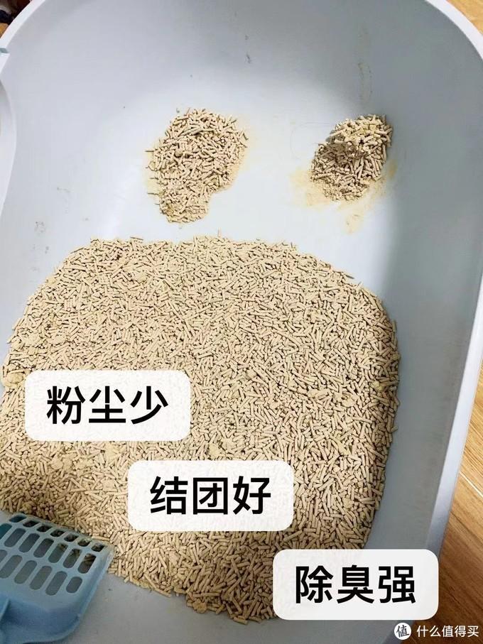 双十一屯的桶装猫砂究竟有多好用!