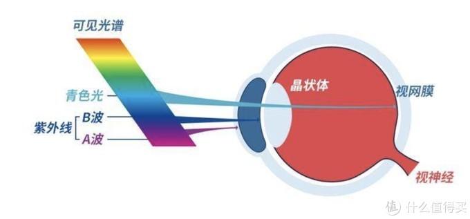 网上配镜,需要知道哪些参数,了解哪些知识?附阿里巴巴淘镜架小攻略