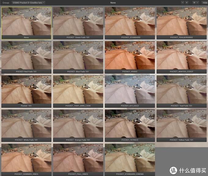 大疆给Pocket准备了多种色彩配置文件(LUT)