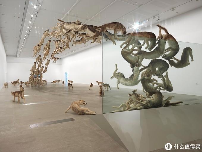 蔡国强雕塑/装置艺术,2013年布里斯班GoMA,摘自an art teacher in China