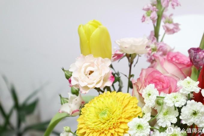 花加、花点的花束通常是搭配好的花材,随便插插都好看,品质也还不错