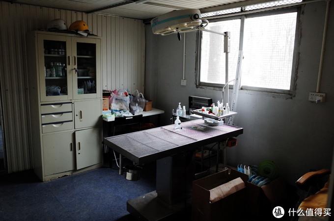 营地的医疗手术室,虽然不及宠物医院的超净流手术室,但是干净整洁