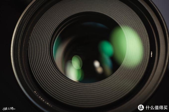 人生第一支微距镜头怎么选?老蛙百微不会让你失望