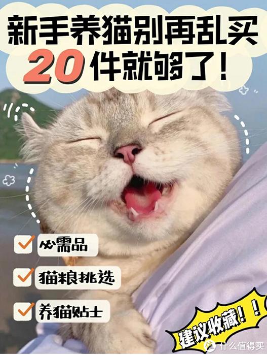 性价比高的猫粮推荐来啦!到底哪款值得买?
