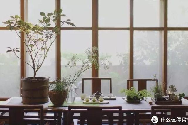 中国式客厅,正慢慢毁了这一代人!