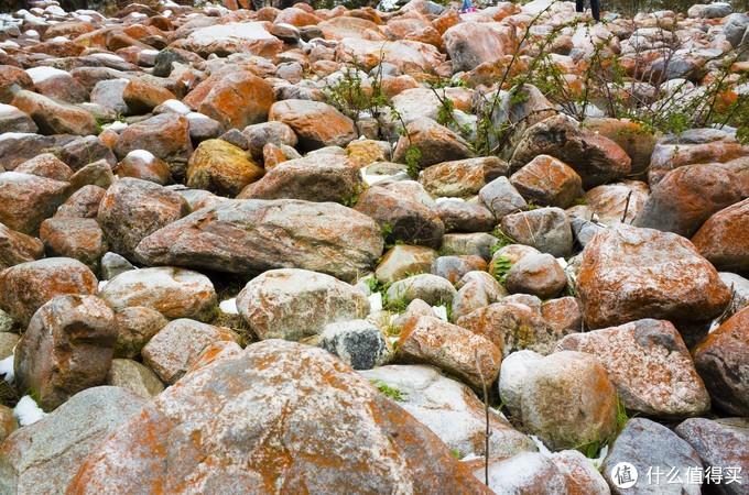 木格措红石头