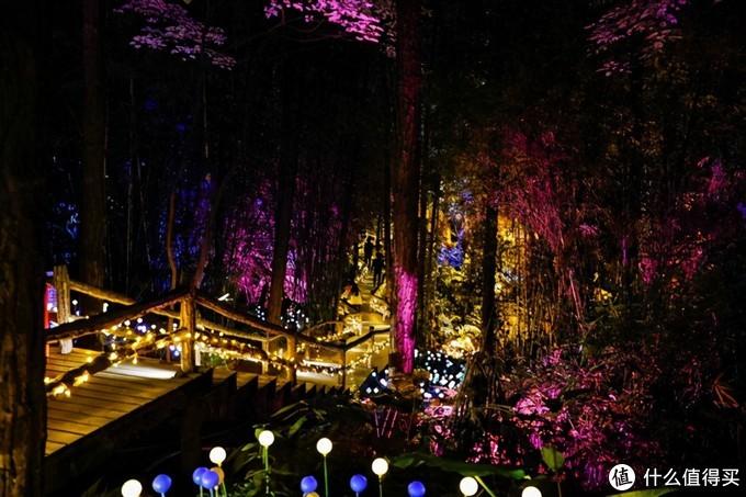 寻觅广州清远森波拉远古森林、开启奇妙之旅,温暖整个冬天