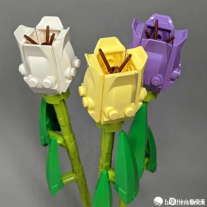 真香!乐高40460玫瑰和40461郁金香开箱评测