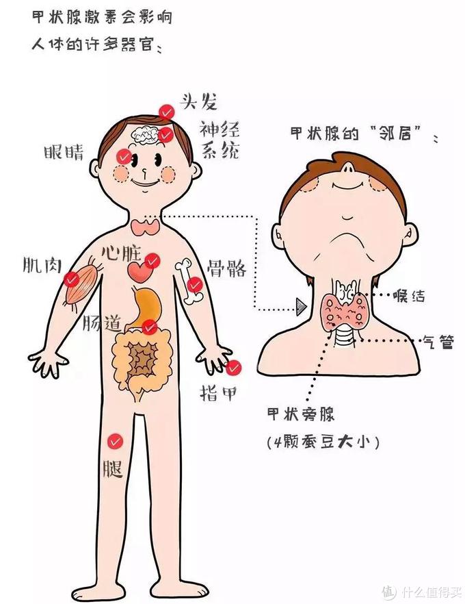 体检结果一头雾水?教你如何解读体检报告+健康简单自测