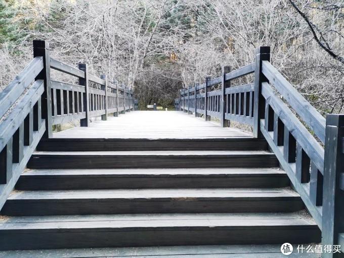 坐上高铁游湖北,第五站:神农架
