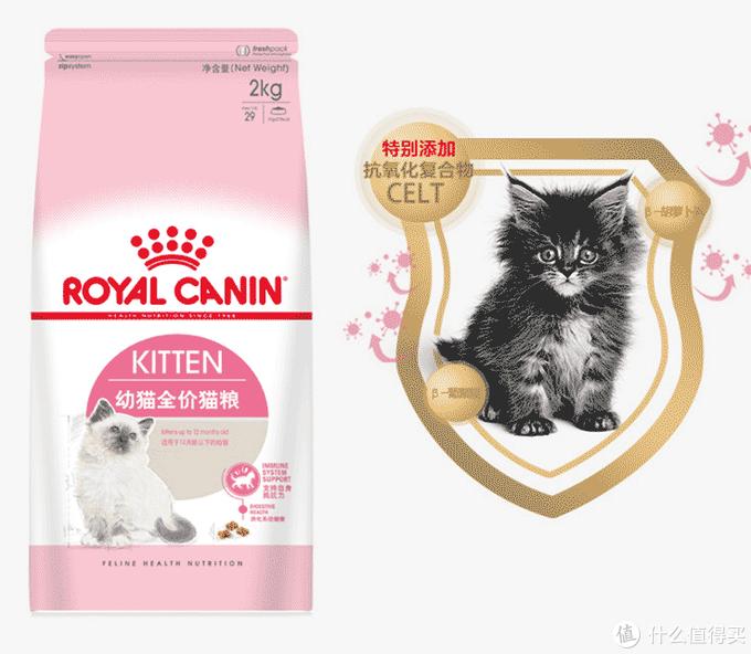 幼猫猫粮推荐,它才是学生党工薪族的性价比之选!