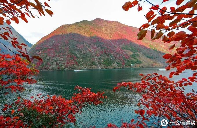 重庆冬季旅游的两极:去仙女山赏雪,去巫山看红叶,都有直飞航线