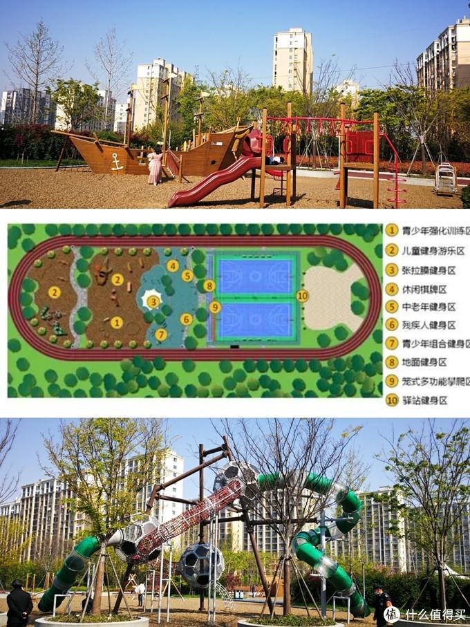 在常州过年,春节赏腊梅,这些免费公园千万别错过哦