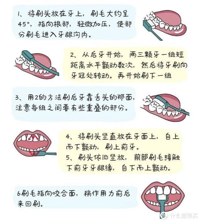 爱护牙齿|我的口腔护理心得及护齿好物分享