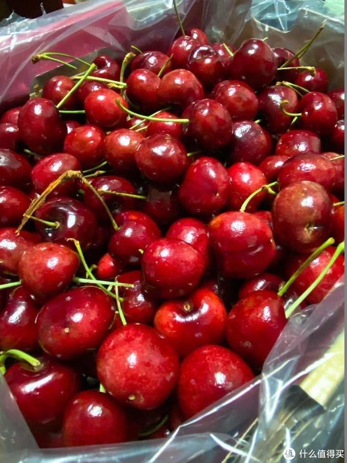 年货囤起来!逢年过节值得入手的美味水果!