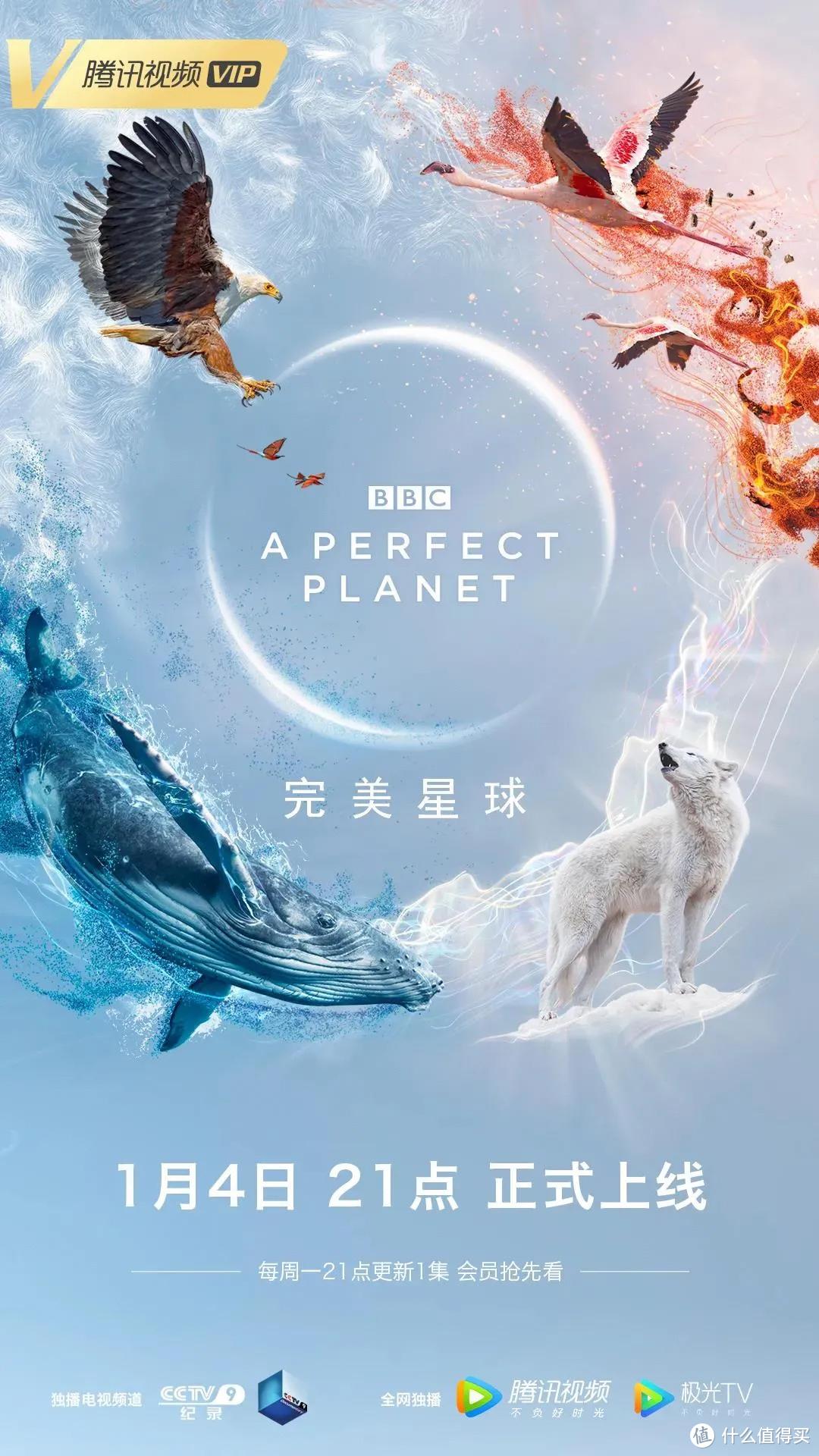 看完《完美地球》,BBC除了纪录片还有一样好看的图书