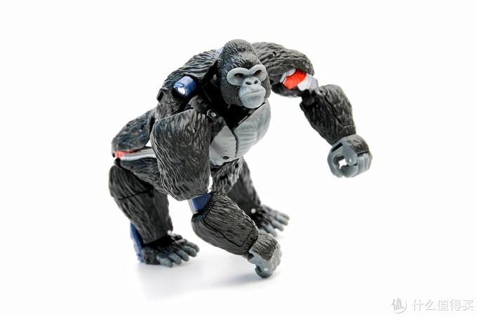 BW粉必入---孩之宝王国系列猩猩队长(擎天圣)玩评