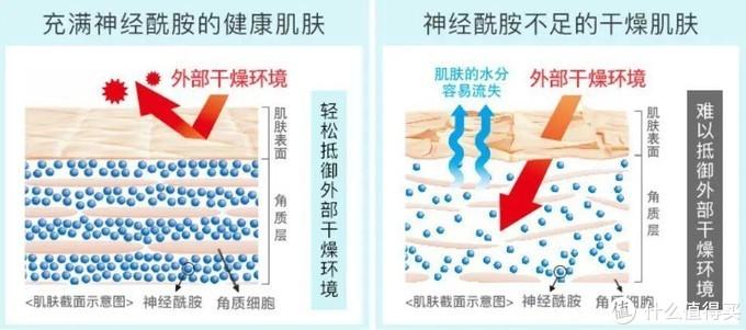 7款热门的保湿面霜空瓶分享,从百元到千元,哪款更值得买?