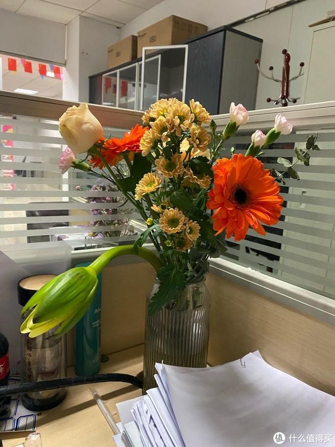 赏心悦目,生机盎然,有花加更爱花。