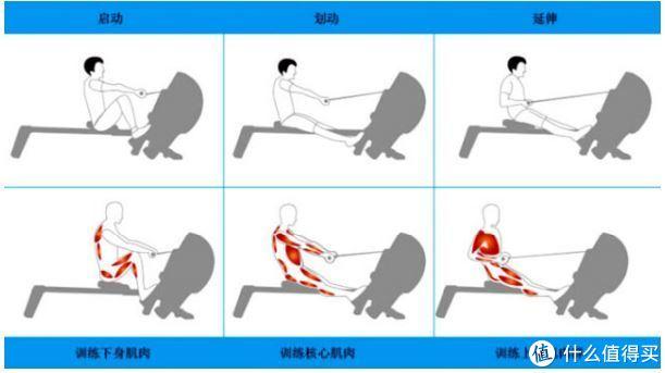 三个阶段锻炼不同肌肉