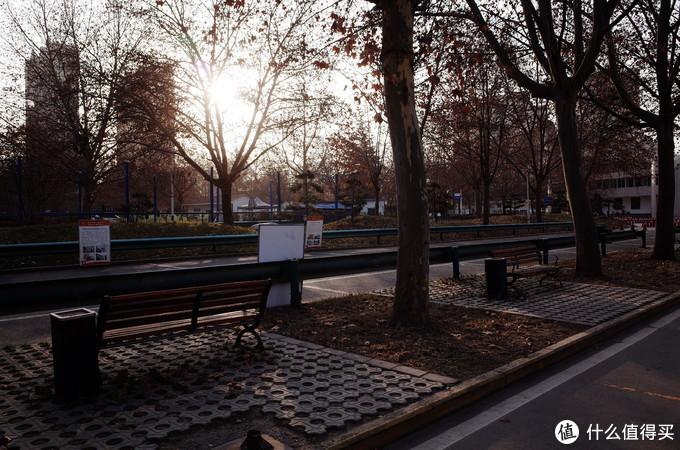 恍惚间有种进入公园的感觉,理光gr1代直出图