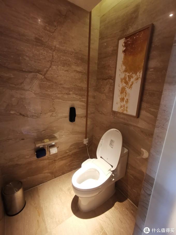 厕所都为电动马桶
