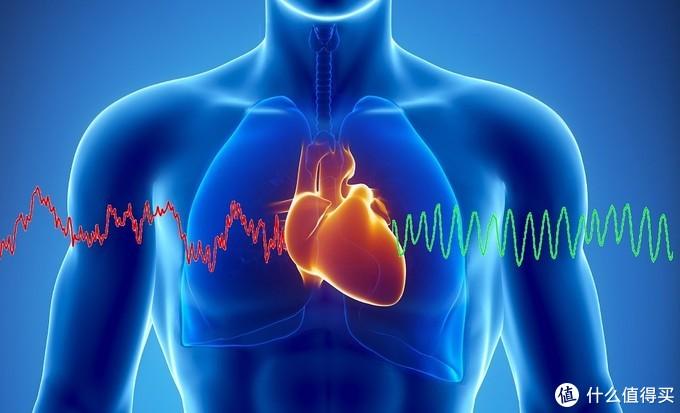起跑线16期:心率训练对提升运动能力有多重要?如何通过心率训练提升跑步成绩?