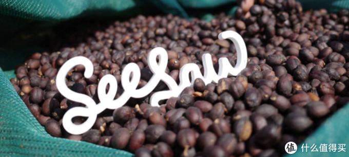 食客:From seed to cup|咖啡的序曲——处理法