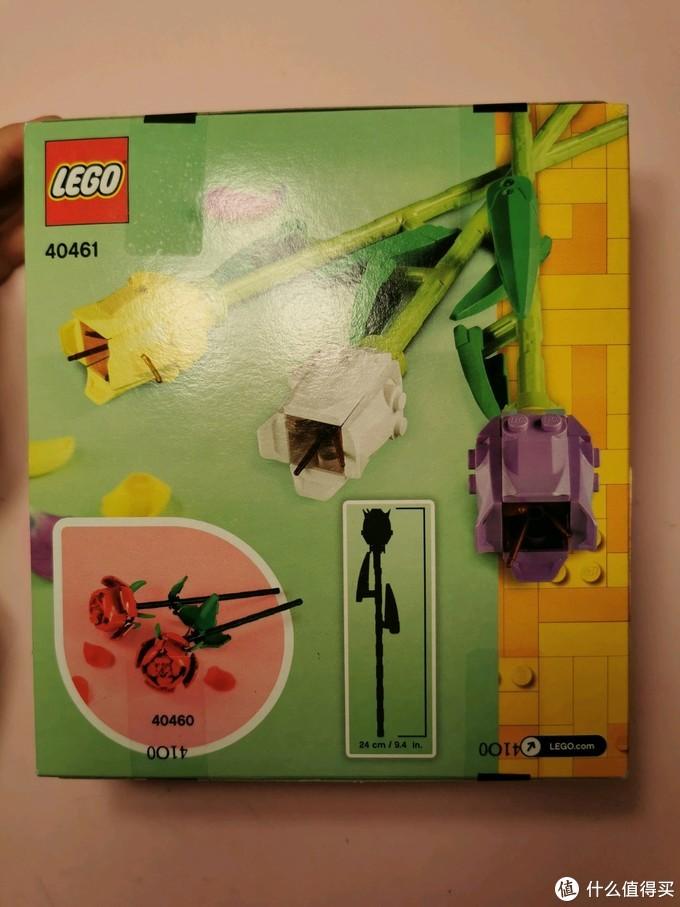40461郁金香盒子