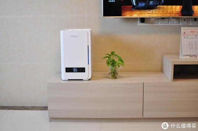 加湿器怎么选?冷蒸发式、超声波式加湿器使用对比(附使用加湿器禁忌事项)