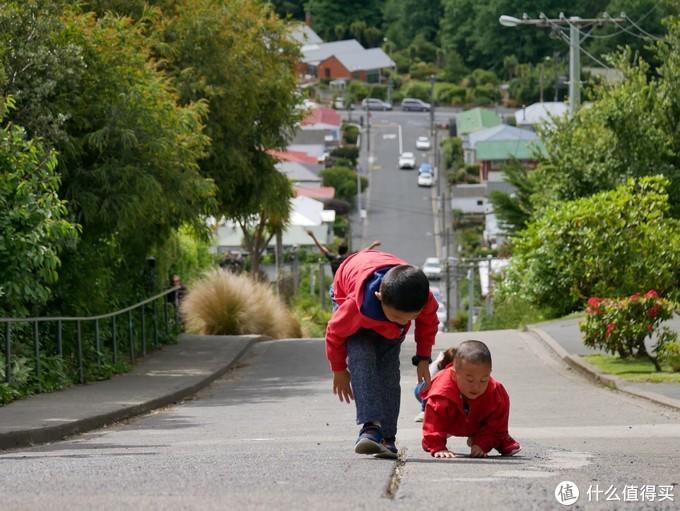 新西兰房车自驾30天,一家四口带2岁娃,纯干货避坑分享,新西兰必看游记
