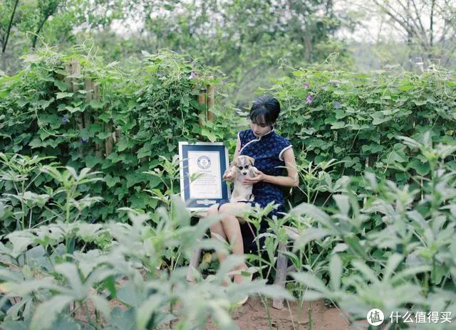 图源:中国日报双语新闻