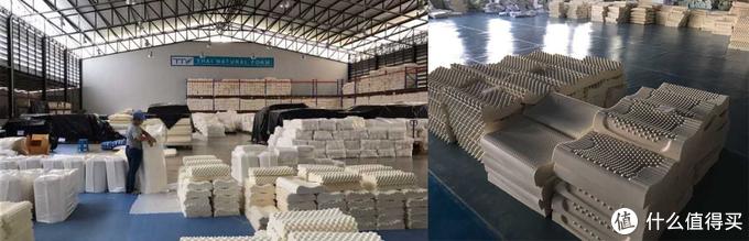 GOLS全球有机乳胶标准认证,乳胶枕的硬实力。
