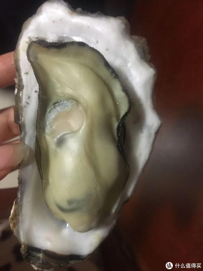 值得一聊01期 ——乳山牡蛎那些事