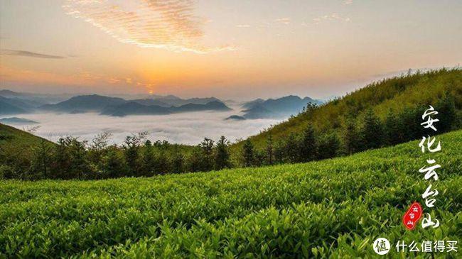 云台山风景区那一抹春阳,我们值得流连忘返
