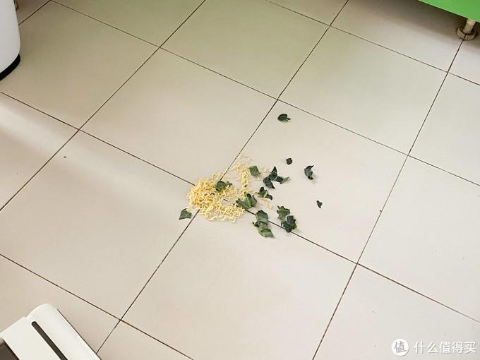 真实体验评测:从宠物毛发到鸡蛋面条,洗地机全能处理吗?